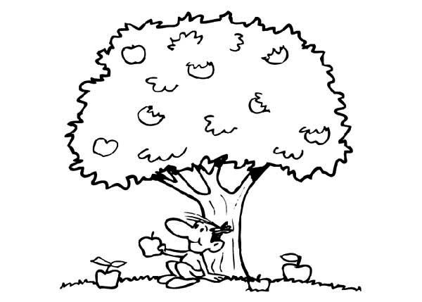 Apple Tree Boy Sitting Under An Apple Tree Coloring Page Tree Coloring Page Coloring Pages Apple Tree