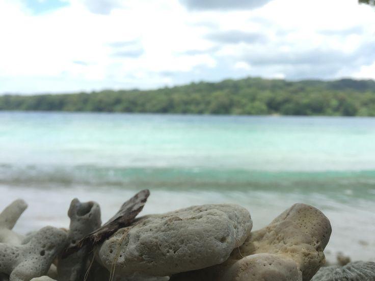 Peucang Island - Ujung Kulon National Park