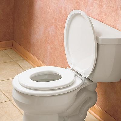 Best 20 Toddler toilet seat ideas on Pinterest Toddler potty