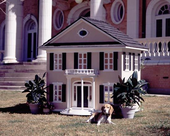 Colonial Dog House--> A home fit for George and Martha Washington should be enough for your pup, don't you think?  The Colonial Dog House brings Mount Vernon living to your backyard, giving your dog a nice rest from the revolutionary war and the politicking that follows.  You'd better treat that little guy right, after all, his face will wind up on the doggie dollar bill one day.