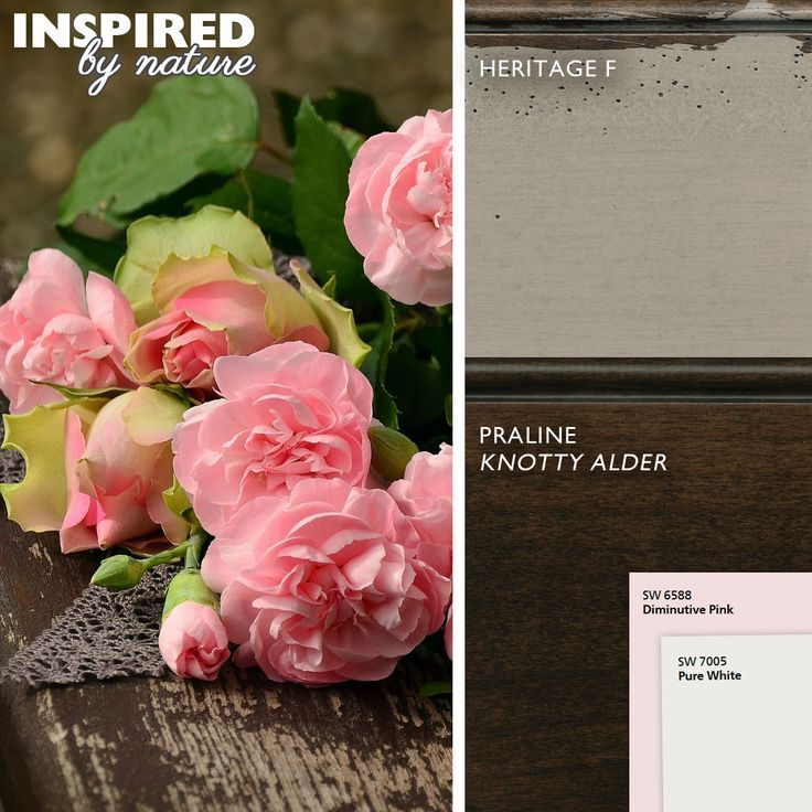 Inspired by Nature: Fall in Love with a Fall Color Palette: Dura Supreme #Cabinetry's Heritage Paint F and Praline stain on Knotty Alder is inspired by an Autumn garden's last bloom of pastel roses. #fallcolors #Colors #kitchencolors