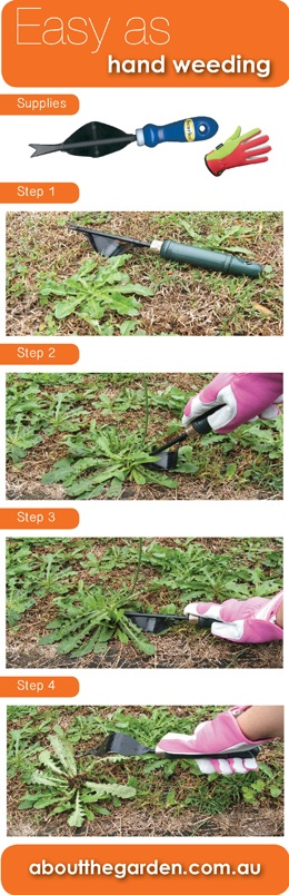 Easy as hand weeding with no chemical #aboutthegarden.com.au