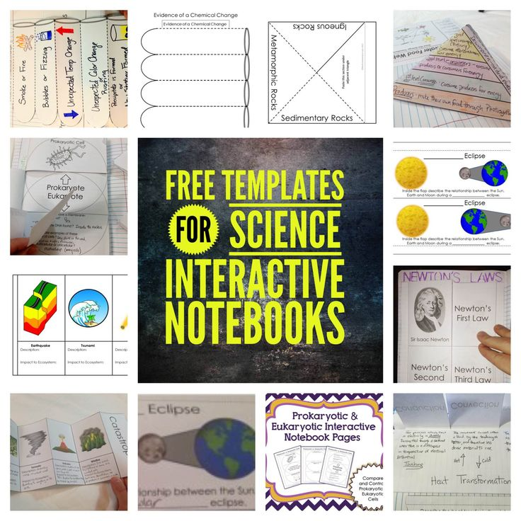 Free Templates for Science Interactive Notebooks - Evidence of a Chemical Change Accordion Template, Convection, Conduction, and Radiation Flippable, Rock Cycle Pyramid, Igneous, Sedimentary, and Metamorphic Rocks, Newton's Laws Flippable, Solar and Lunar Eclipses Flippable, Prokaryotic and Eukaryotic Cells Flip Book, Transfer of Energy in an Ecosystem Pyramid, Catastrophic Events Flip Book