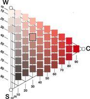 triángulo de sólido cromático NCS