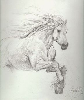 Title: Petar Meseldzija: majestic horse study Artist: Petar Meseldzija (Penciller) Media Type: Pencil Art Type: Interior Page For Sale Status: NFS Views: 1,013