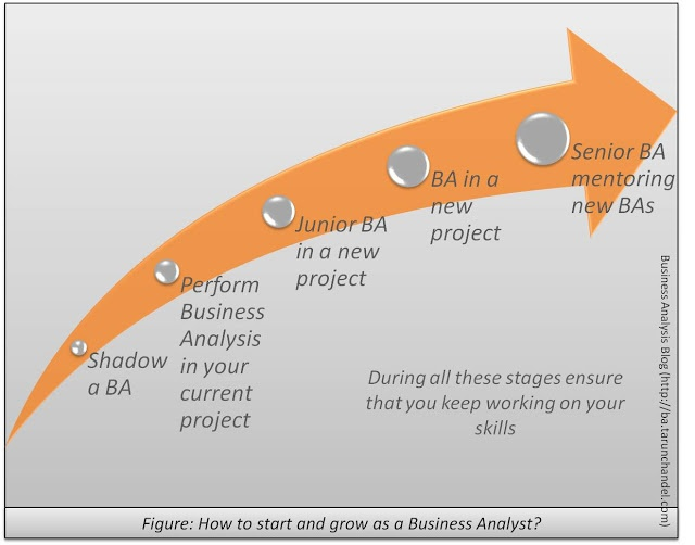 assessment for business analyst candidates Business analyst skills evaluation for business systems analysis, procedures analysis and user department/is department interface.