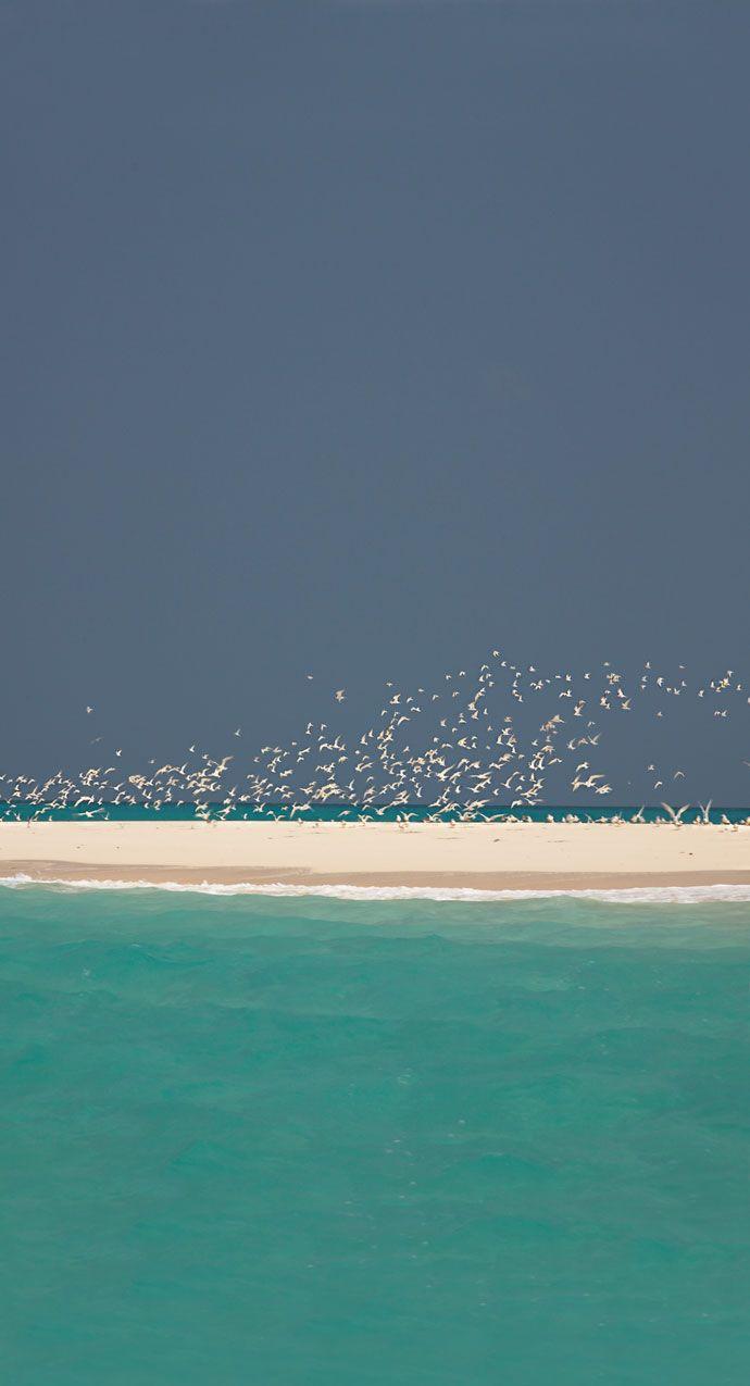 Archipel des Quirimbas, Mozambique