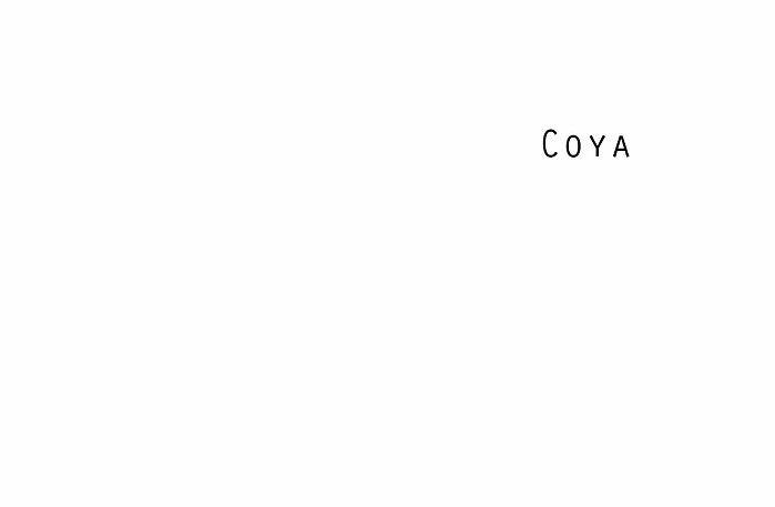 Coya, Libro archivo