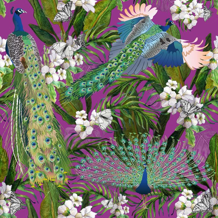 Third in the collection of peacock patterns.