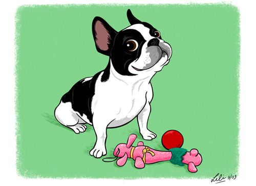 Lili Chin creates ridiculously sweet commissioned drawings of dogs to raise money for Boston Buddies Southern California Boston Terrier Rescue