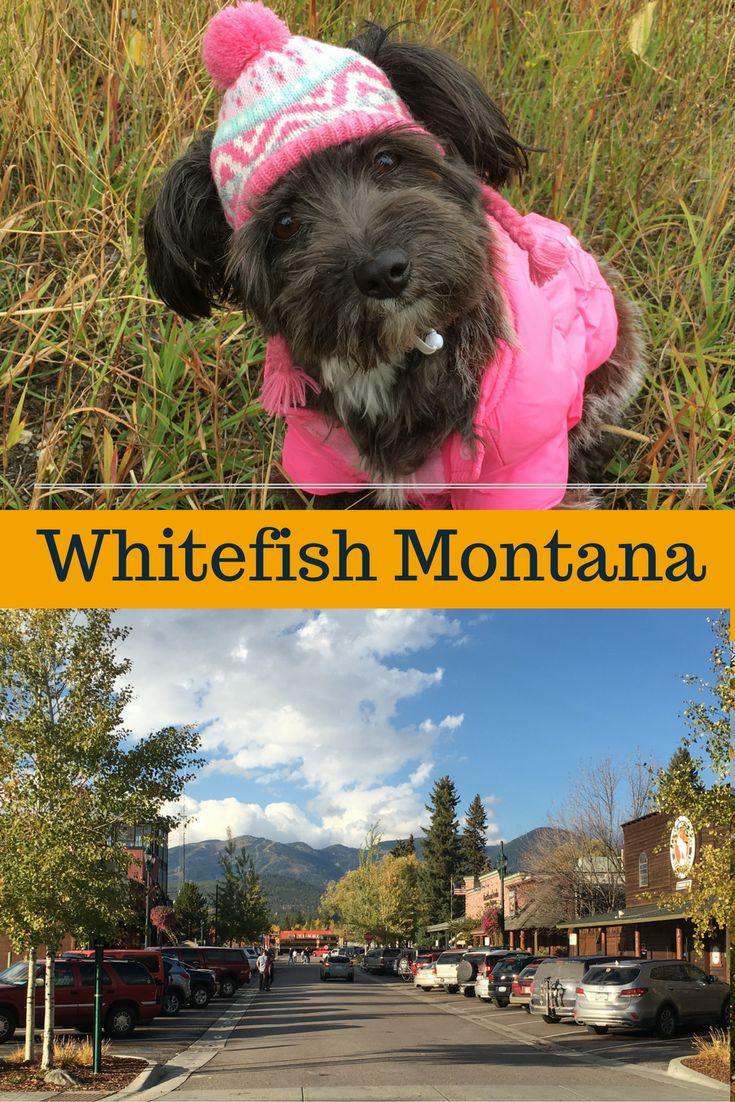 Photo Tour of Whitefish Montana @montanahappy.com
