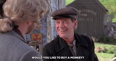 New party member! Tags: monkey david letterman cabin boy chris elliot would you like to buy a monkey