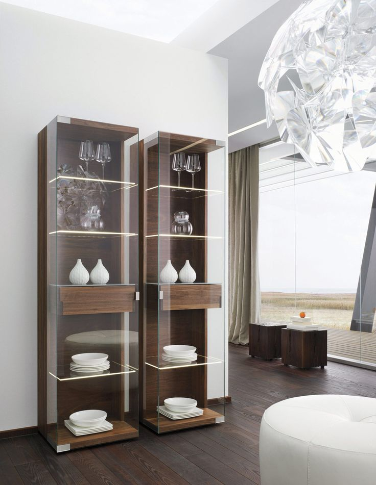 Terrific 17 Best Ideas About Modern Display Cabinets On Pinterest Mid Largest Home Design Picture Inspirations Pitcheantrous