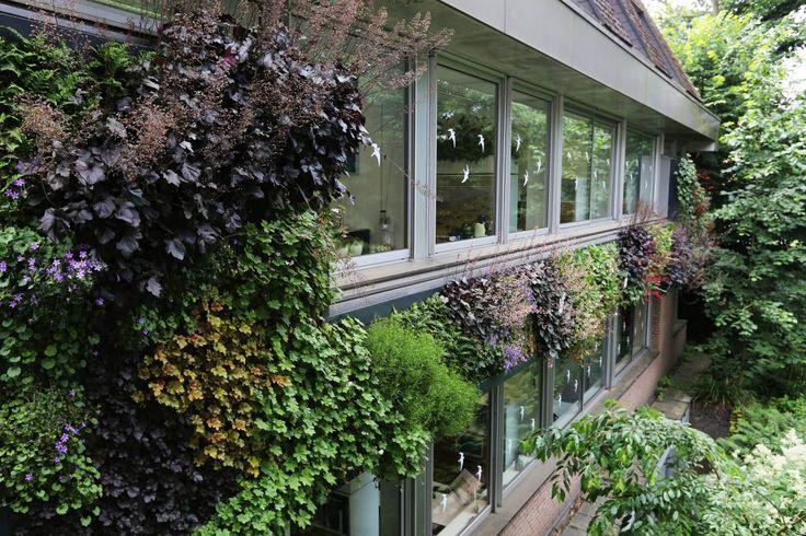 LivePanel: outdoor groene gevel