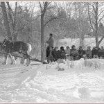 Sleigh Ride 1 by Mark Prest - Enjoying winter!
