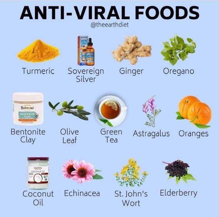 Antiviral foods in 2020 anti viral foods food antiviral