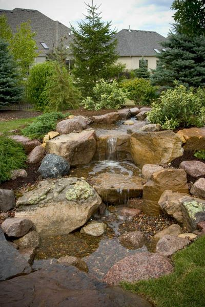 Backyard Waterfall with Evergreens