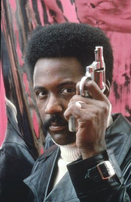 richard roundtree movies