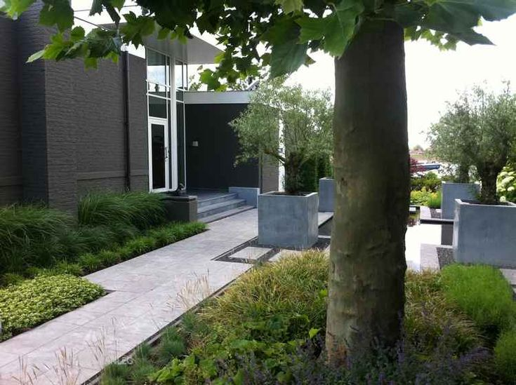 Contemporary Landscape Ideas 117 best lscape - contemporary images on pinterest   landscaping