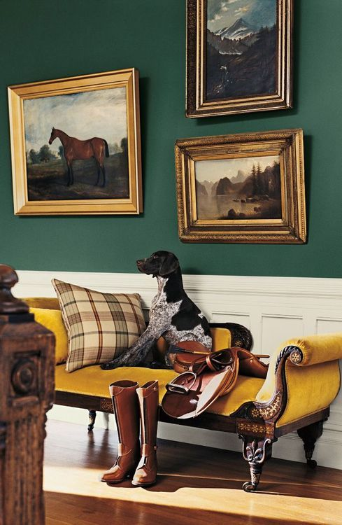 Green walls and yellow chaise and what about the doggy!