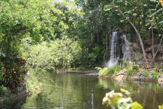 Garden of the Groves - Grand Bahama
