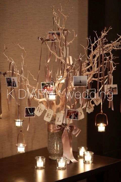 9.16*welcome tree |けぇDIARY*wedding*baby