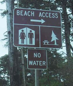Those beaches with no water are the worst!
