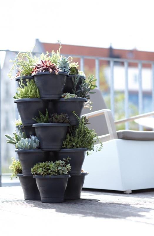 Zelfs met weinig ruimte kun je nog heel wat plantjes kwijt zo!