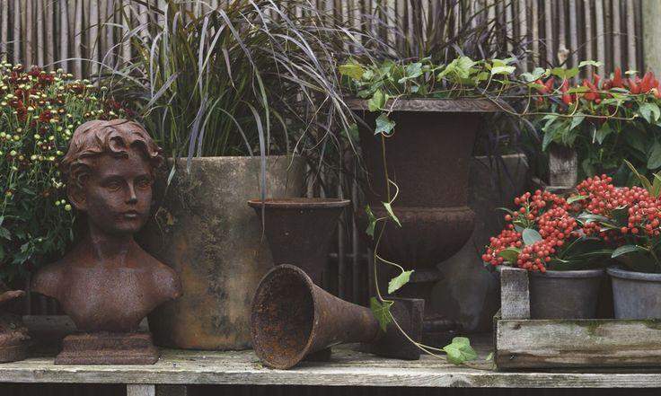7 saker att göra i trädgården just nu - Sydsvenskan