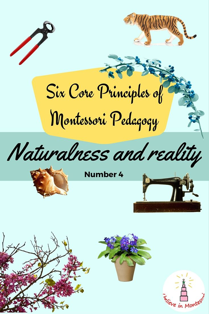I Believe in Montessori: 6 Core Principles of Montessori Pedagogy. Number 4: Naturalness and reality
