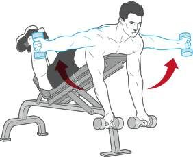 DUMBBELL REVERSE FLY Lie face down on an incline bench, holding a pair of dumbbells with an underhand grip. With your elbows slightly bent, raise the weights out from your sides. Pause, then lower the weights. Do 12 reps.