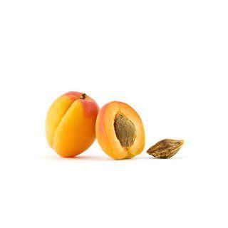 Aprikosenkernöl ist sehr reich an mehrfach ungesättigten Fettsäuren. Es ist besonders für müde, fahle und welke Haut geeignet. Dieses Öl belebt, stimuliert, nährt und verfeinert Ihre Haut und verzögert den Alterungsprozess.