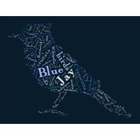 how to add words to tagxedo