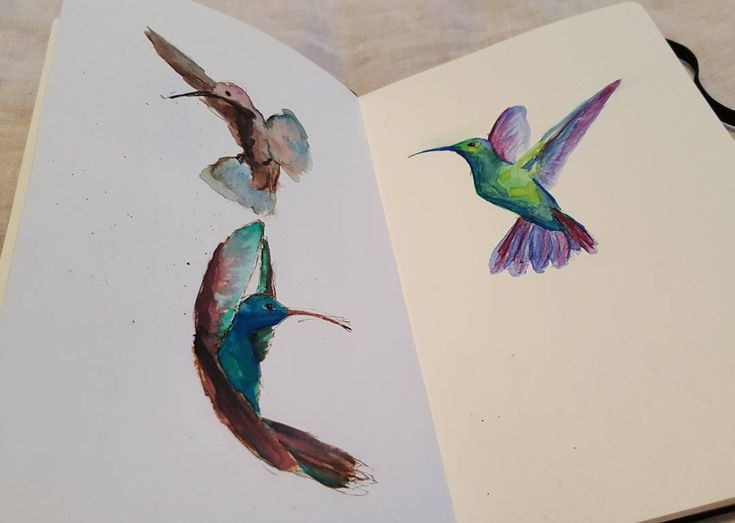 """31 Likes, 3 Comments - Paul Cotton (@pw.cotton) on Instagram: """"From last night's #creative #meetup. Three little #hummingbird friends. Close ups to follow.  #ink…"""""""