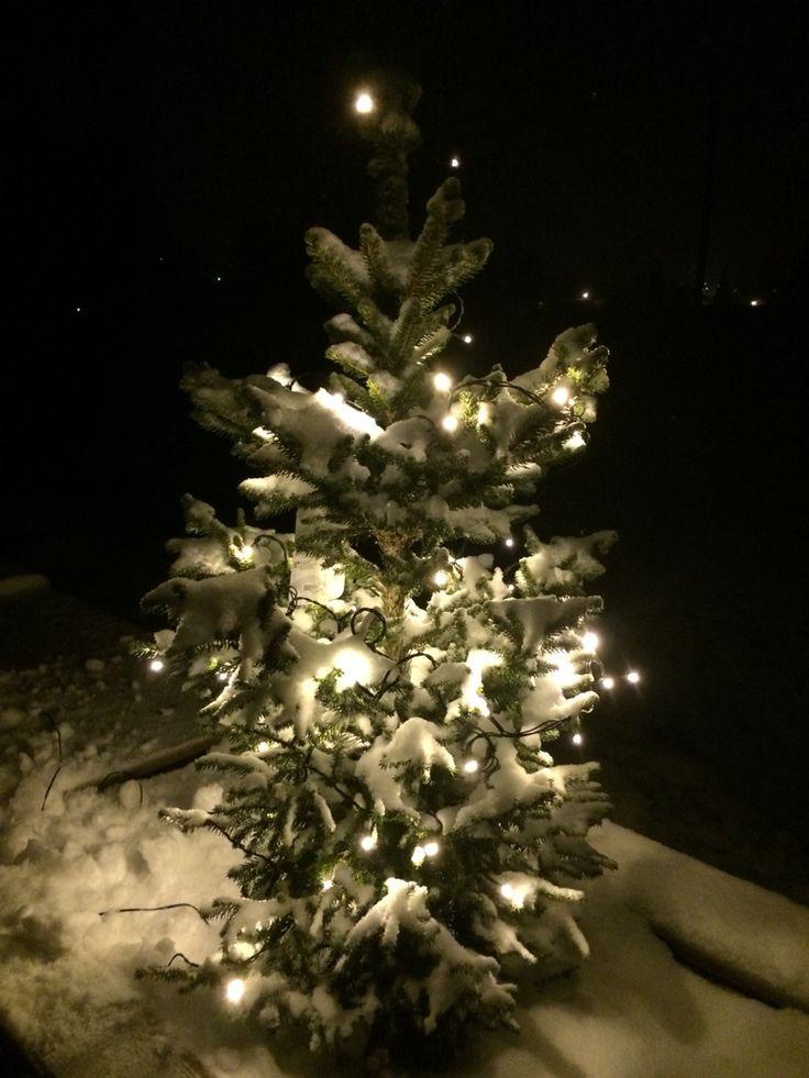 Endelig snø