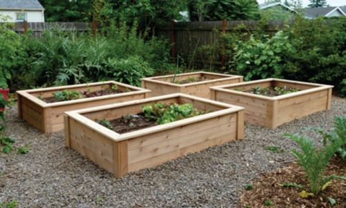 107 best raised beds images on Pinterest Balcony Gardening and