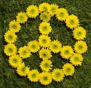 peace it. #freepeople #peace