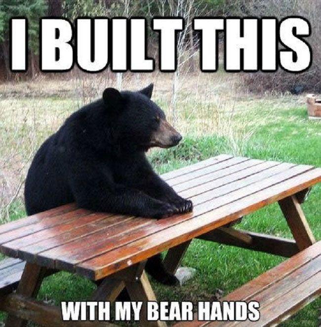 Funny Built This Bear Hands Picnic Table Pun Joke Pics1