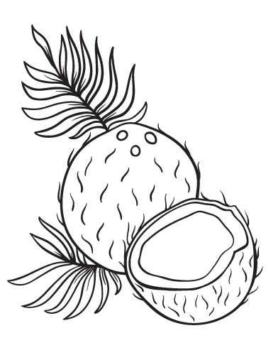 Printable Coconut Coloring Page Free PDF Download At Coloringcafe