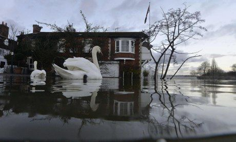 Henley-on-Thames riverside properties partially submerged in floodwaters: Silvester says it is the prime minister's fault that large swaths ...