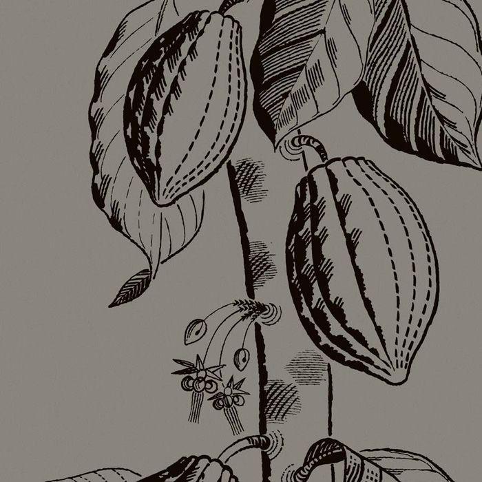 89/11046.CS Cocoa – Tan – Cole & Son Wallpaper | L.A. Design Concepts