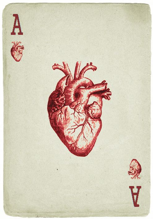 ace of hearts, card, design, illustration, anatomical heart