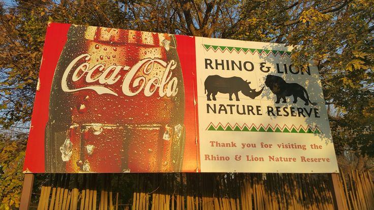 Rhino & Lion Nature Reserve near Magaliesburg and Krugersdorp, Gauteng, South Africa.