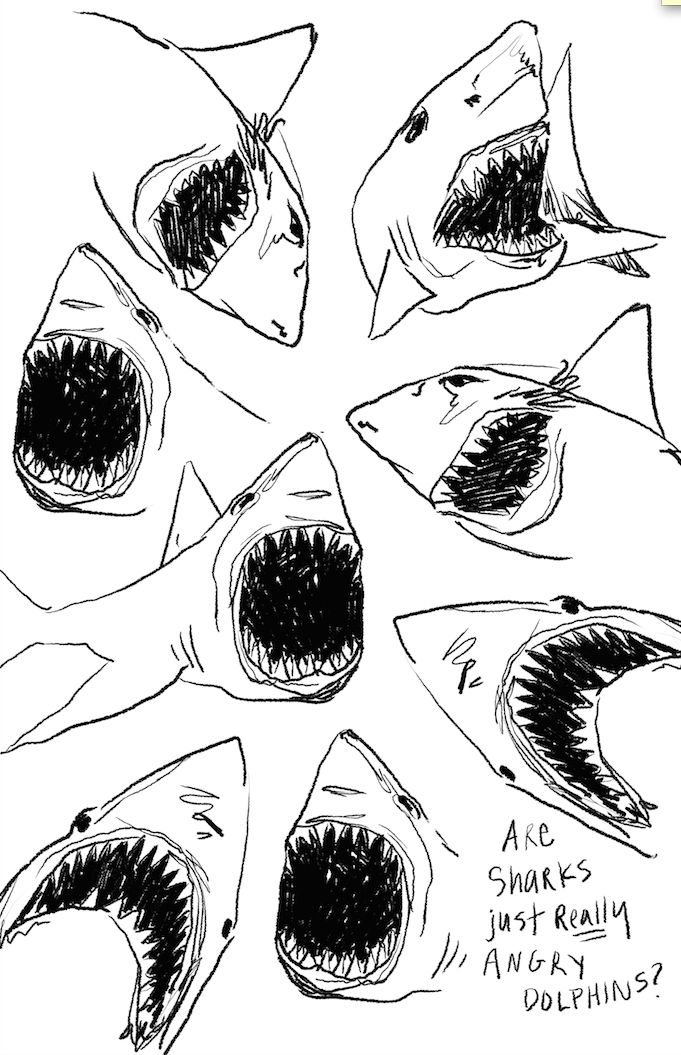 "#sharks #illustration #illustrator  ""Are sharks just really angry dolphins?"" Hahahahhahahaaa!!!!!"