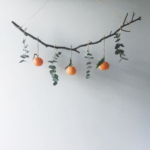 {Edible decorations} Officially Winter has started today. Now we just need some snow to go with it. Happy Solstice!