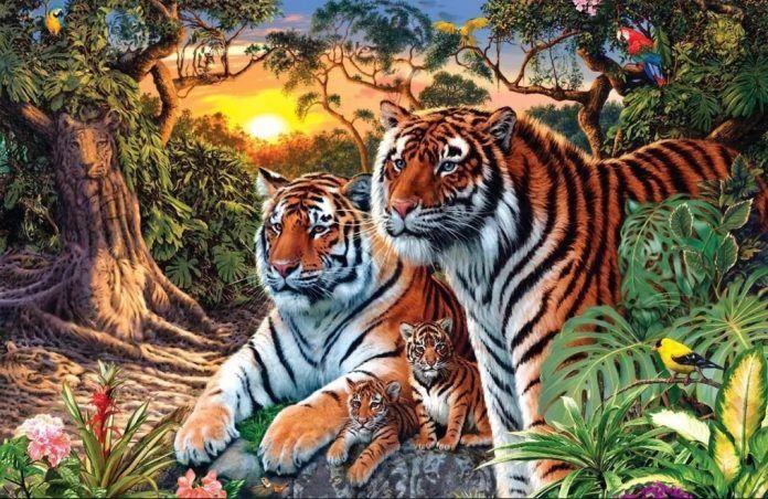 Сколько тигров вы сможете найти на этой картинке? Быстрое определение уровня IQ | В мире интересного