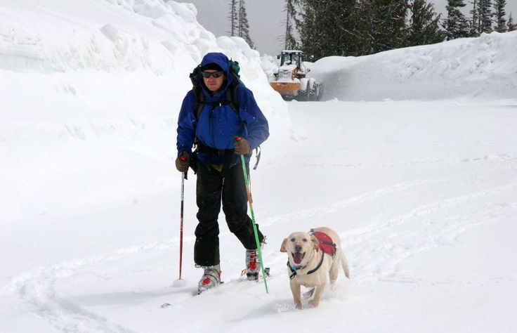 Another job that involves dicing with death on the mountains of the world, avalanche forecasting cal... - Washington State Department of Transportation Flickr CC