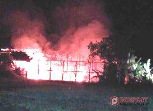 Kandang Ayam Terbakar, Pemilik Rugi Rp 50  Juta - http://denpostnews.com/2015/12/22/kandang-ayam-terbakar-pemilik-rugi-rp-50-juta/