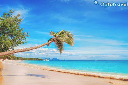Crociera Natale ai Caraibi con Msc Crociere a 1.771€ (Volo incluso) Crociera Natale ai Caraibi con Msc Crociere per 8 giorni in All inclusive tra Cuba, Giamaica, Isole Cayman e Messico a 1.771€ (volo incluso!), clicca qui! #crocieraonlinesconti #crocierecaraibi #crocierenatale #crocierepromo #crocieresconti #msccrociere #offertecrocieraonline #offertecrociere #offertemsccrociere #offertenatale #vacanzecaraibi