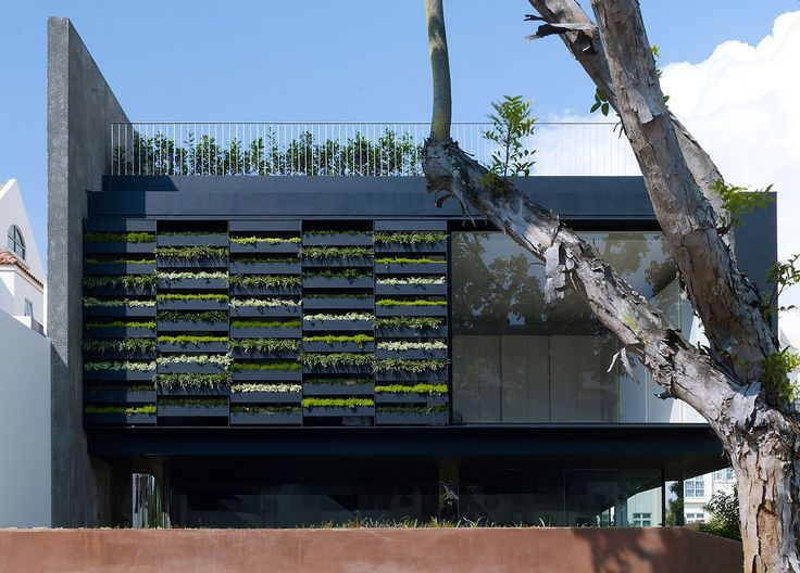 The Planter Screen With Removable Pots... Maximum Garden House By Formwerkz  Architects (